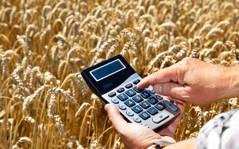 Смоленские сельскохозяйственники получили более полумиллиарда рублей господдержки