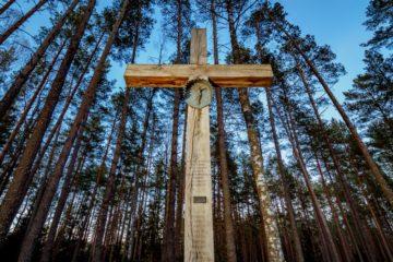 Более 540 человек, расстрелянных в конце 1930-х годов, обнаружены на территории мемориального комплекса «Катынь»