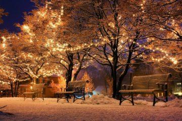 На 2 недели предложили в России  продлить Новогодние каникулы