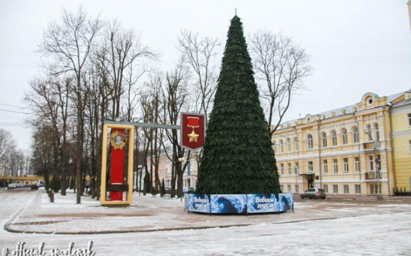 В Смоленске установили главную новогоднюю елку города