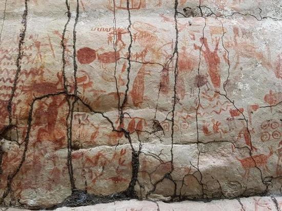 В Колумбии обнаружили полотно наскальных рисунков длиной 12,5 километров