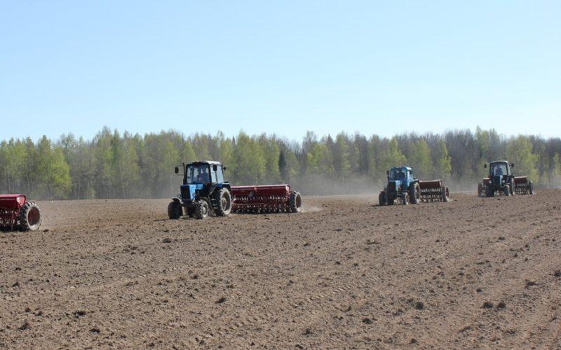 В этом году Смоленская область стала первым регионом, который начал предоставлять субсидии аграриям