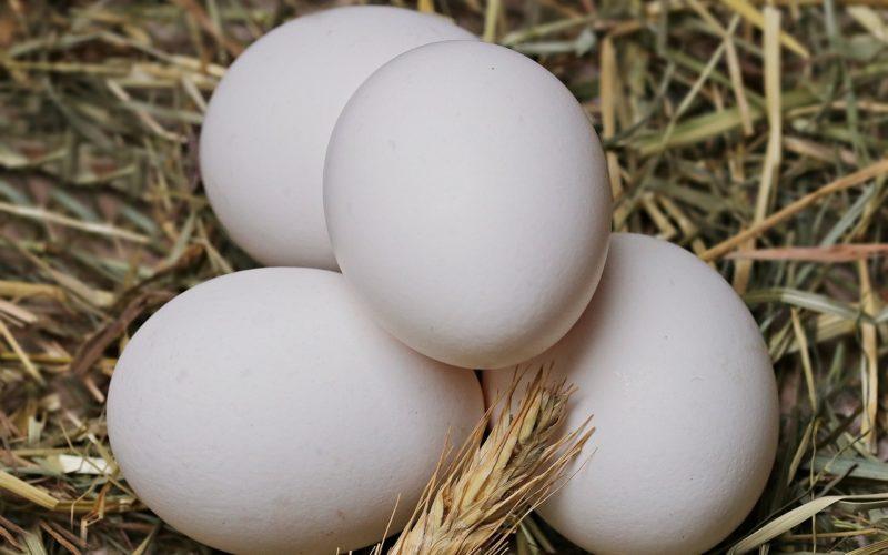 Российские производители мяса птицы и яиц договорились о сдерживании цен на свою продукцию