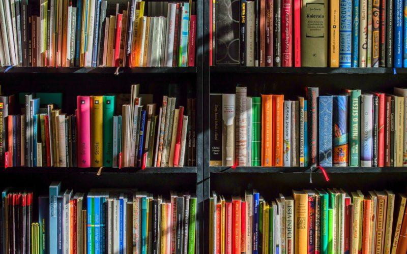 Смолянка попала в шорт-лист литературной премии Норы Галь