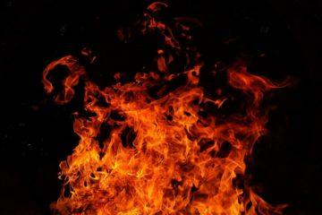 733 раза смоленские пожарные выезжали на тушение горящей травы в этом году