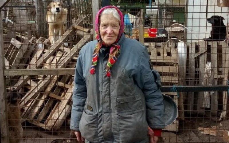 Ушла из жизни хозяйка смоленского приюта для животных, 12 собак остались не пристроенными