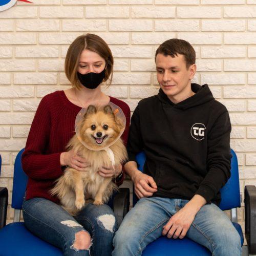 Ветеринарная клиника «ЗооМедЭксперт»: пришьем тебе новые ножки – и опять побежишь по дорожке