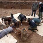 Останки генерала Гюдена, найденные в Смоленске, передадут 23 июня в Музее войны 1812 года