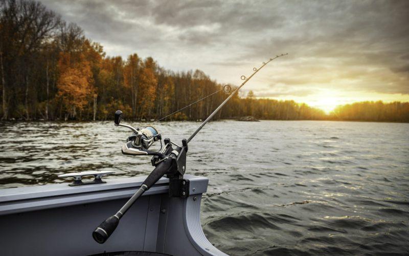 Алексей Островский взял под собственный контроль ситуацию с массовой гибелью рыбы на реке Гжать в Гагаринском районе