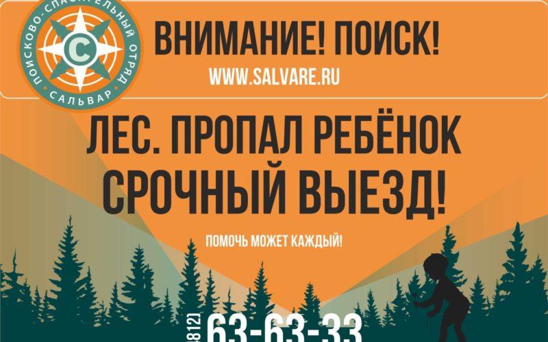 В Смоленской области в лесу продолжаются поиски пропавшей годовалой малышки