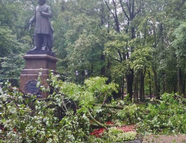Уникальная ограда XIX века повреждена после падения деревьев во время сильного ливня в Смоленске