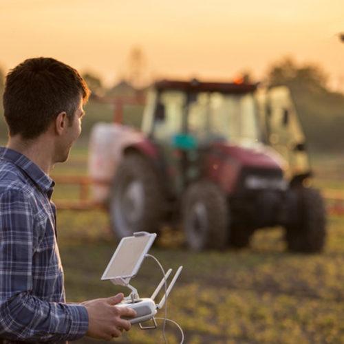 Россельхозбанк охватил «Школой фермера» 50 регионов